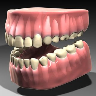 Teeth-05.jpg81ed741f-7bf6-4230-bfc4-b6cefd7b4e9fLarger